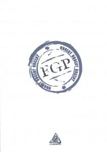 FGP-Funcţia gândirii poetice - COLECTIV